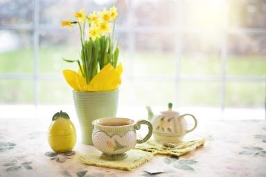 daffodils-1316127_1920.jpg